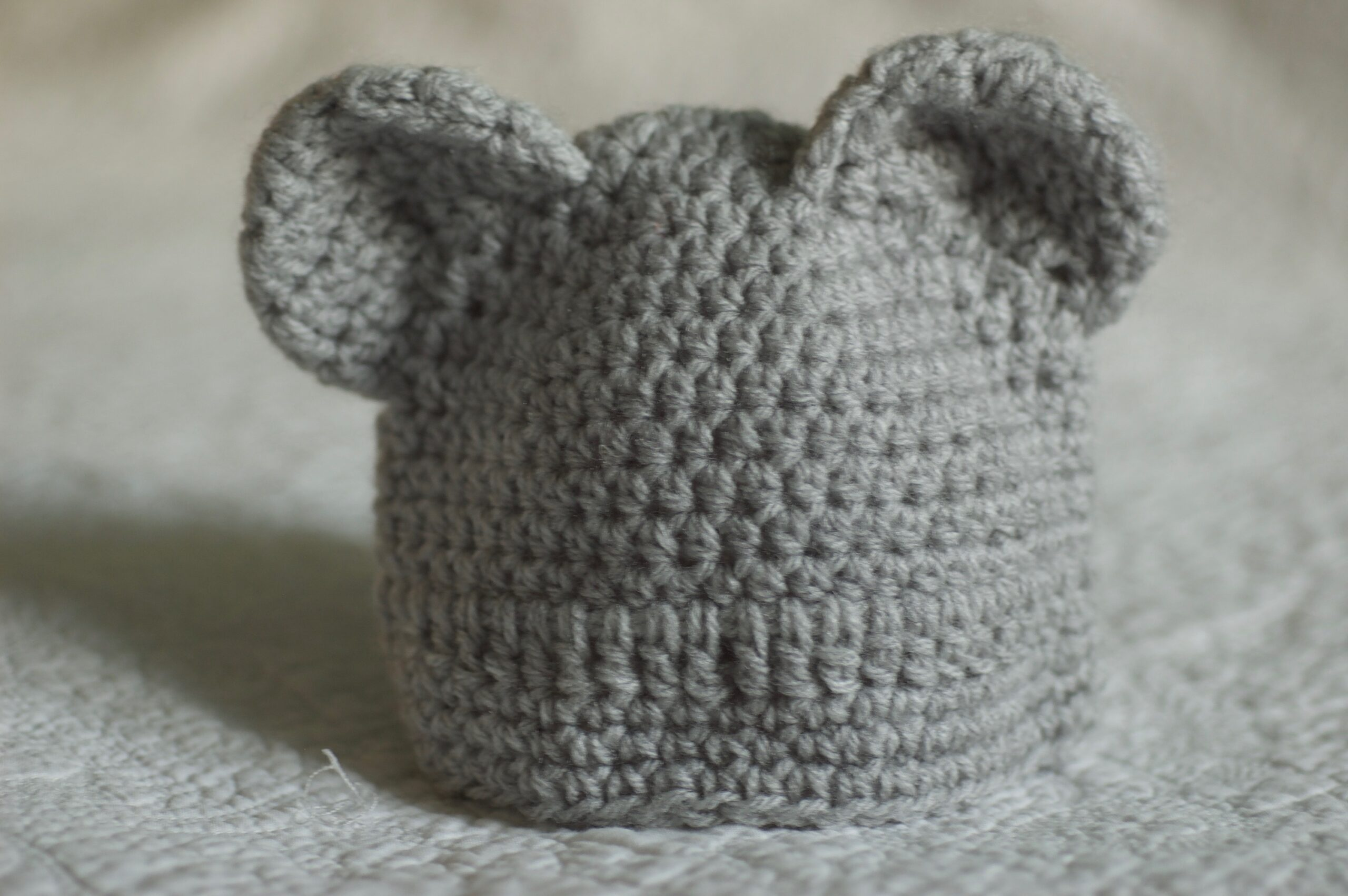 Bear ears beanie.