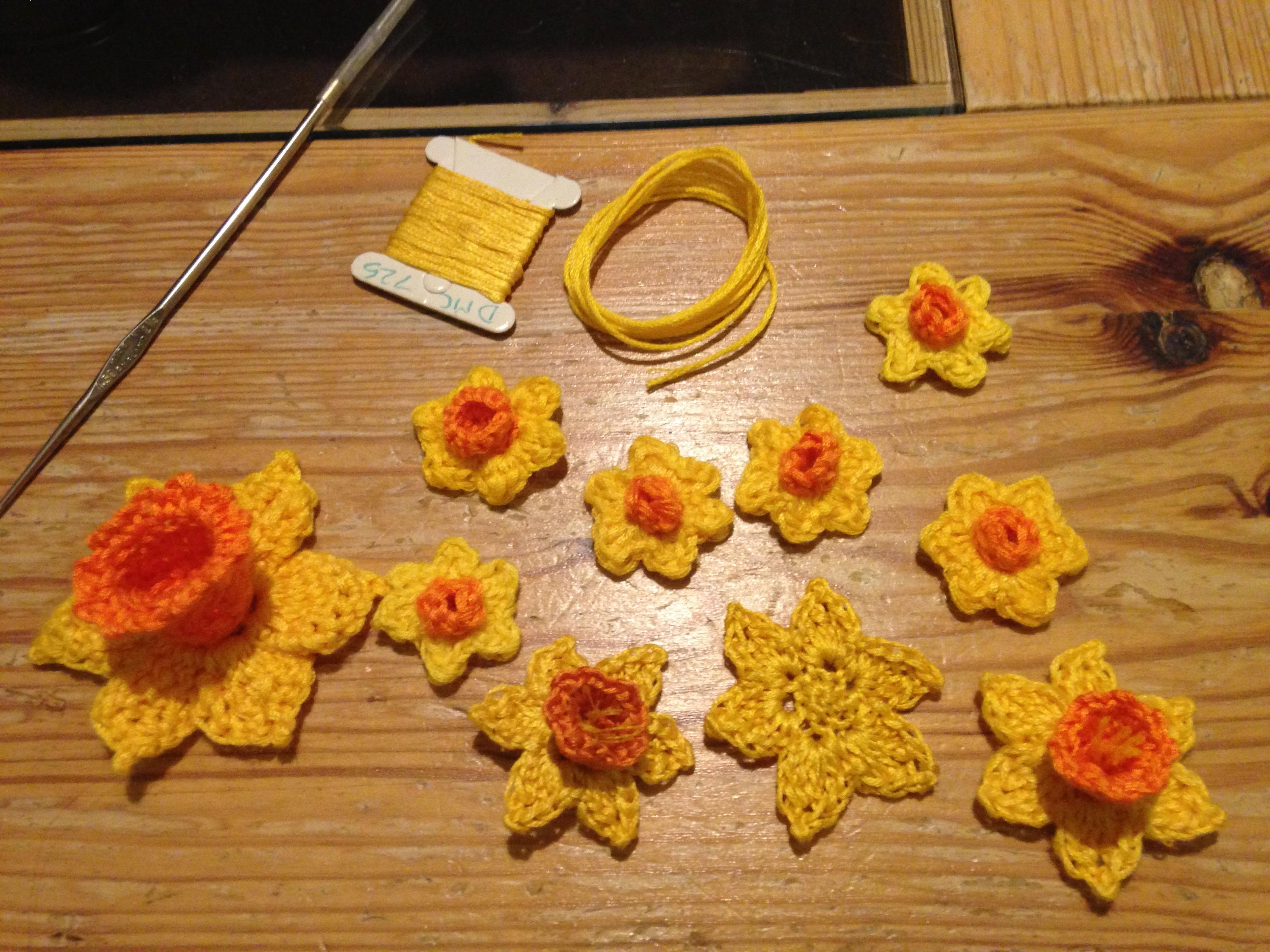 Developing Daffodil patterns.